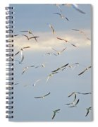 Terns Flying Away Spiral Notebook