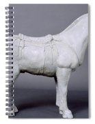 Terracotta Warrior's Horse Spiral Notebook