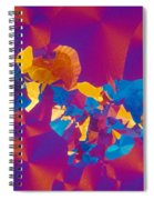 Testosterone Crystal Spiral Notebook