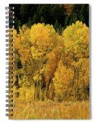 Teton Autumn Foliage Spiral Notebook