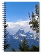 Teton Through The Trees Spiral Notebook