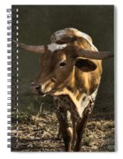 Texas Longhorn # 4 Spiral Notebook