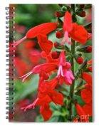 Texas Sage Spiral Notebook