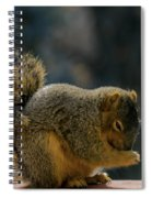 Thank You For The Nuts Spiral Notebook