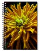 thank you Zinnia Flower Spiral Notebook