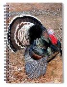 Thanksgiving Turkey Jitters Spiral Notebook