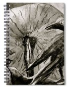That Which Lies Behind In Black And White Spiral Notebook