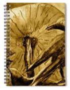 That Which Lies Behind In Sepia Spiral Notebook