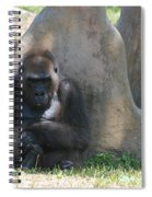 The Angry Ape Spiral Notebook