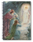 The Appearance Of The Angel Spiral Notebook