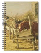 The Appian Way Spiral Notebook