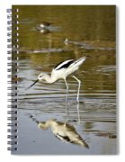 The Avocets  Spiral Notebook