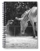 The Back End In Black And White Spiral Notebook