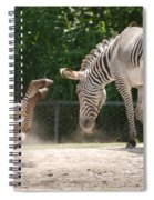 The Back End Spiral Notebook