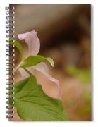 The Backside Of  Spiral Notebook