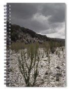 The Bank Of The Nueces River Spiral Notebook