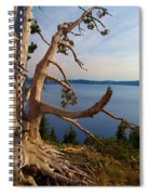 The Banks Of Crater Lake Spiral Notebook