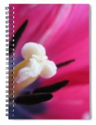 The Beauty From Inside Spiral Notebook