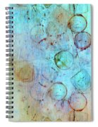 The Beauty In Shapes Spiral Notebook