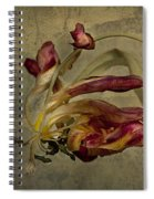 The Beauty Never Dies Spiral Notebook