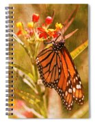 The Beauty Of A Butterfly Spiral Notebook