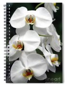 The Beauty Of Orchids  Spiral Notebook