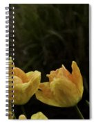 The Beauty Of Spring Spiral Notebook