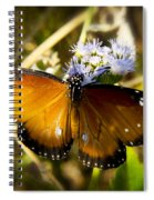 The Beauty Of The Queen  Spiral Notebook