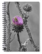The Bee Matters Spiral Notebook