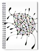The Belly Spiral Notebook