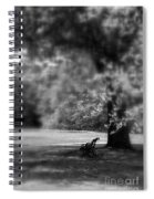 The Bench In The Park Spiral Notebook