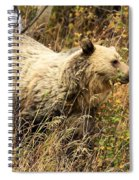The Berry Hunter Spiral Notebook