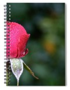 The Big Rain Drop Spiral Notebook