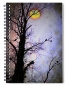 The Black Crows Spiral Notebook