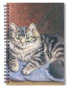 The Blue Cushion Spiral Notebook