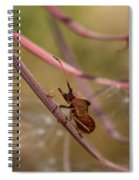 The Bug With Fireweed Seeds Spiral Notebook