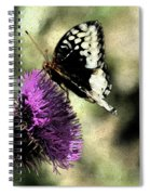 The Butterfly II Spiral Notebook