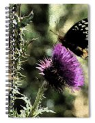 The Butterfly IIi Spiral Notebook