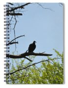 The Buzzard Is Two Faced Spiral Notebook
