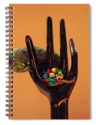 The Christmas Pickle Spiral Notebook