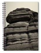 The Cliff Bw Spiral Notebook