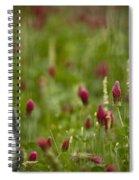 The Clover Field Spiral Notebook