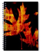 The Color Of Autumn Spiral Notebook