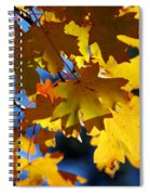 The Colors Of Autumn In Arizona  Spiral Notebook