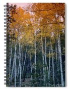 The Colors Of Fall II Spiral Notebook