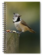 The Crested Tit Spiral Notebook