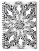 The Crystal Snow Flake Spiral Notebook