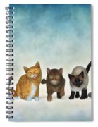 The Cute Ones Spiral Notebook