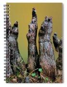 The Cypress Knees Chorus Spiral Notebook