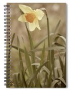 The Daffodil In Partial Sepia Spiral Notebook